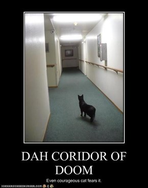 DAH CORIDOR OF DOOM