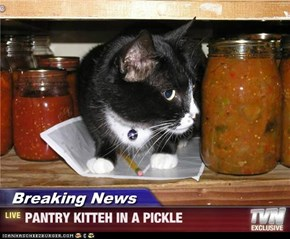 Breaking News - PANTRY KITTEH IN A PICKLE