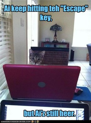 "An don't get meh started on teh ""any"" key."