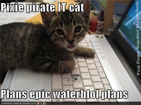 Pixie pirate IT cat  Plans epic waterblol plans