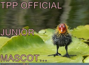TPP OFFICIAL  JUNIOR  MASCOT...