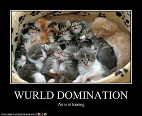 WURLD DOMINATION