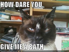 HOW DARE YOU  GIVE ME A BATH