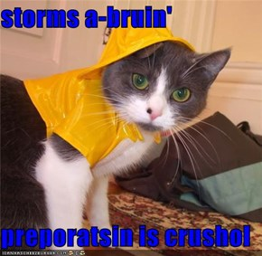 storms a-bruin'  preporatsin is crushol