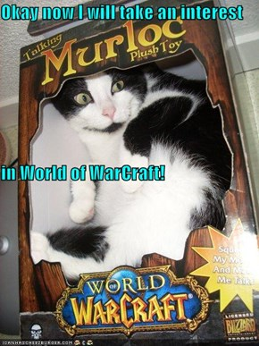 Okay now I will take an interest in World of WarCraft!