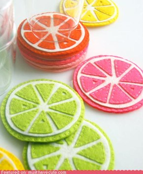 Citrus Drink Coasters