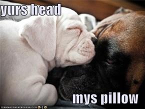 yurs head  mys pillow