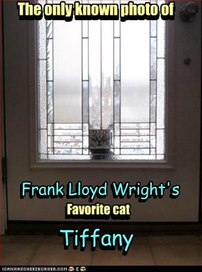 Frank Lloyd Wright's Cat