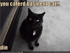 you calerd basment cat!!  die