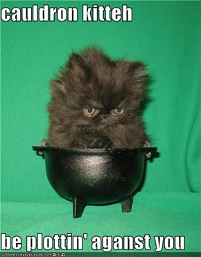 cauldron kitteh  be plottin' aganst you