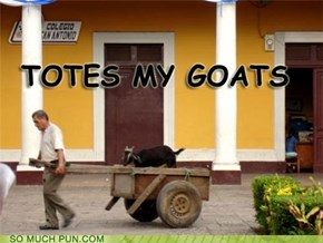 Totes M'Goats