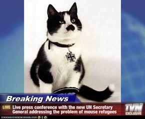 Breaking News - Live press conference with the new UN Secretary General addressing the problem of mouse refugees
