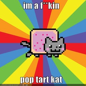 im a f**kin   pop tart kat