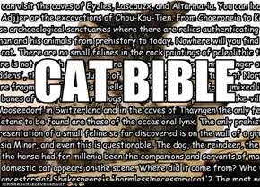 Cat Bible
