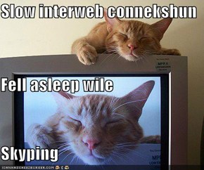 Slow interweb connekshun Fell asleep wile Skyping