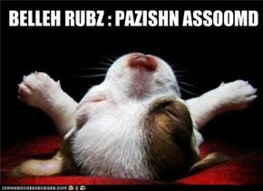 BELLEH RUBZ : PAZISHN ASSOOMD