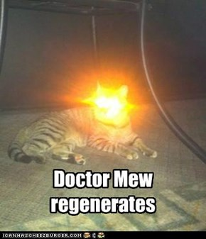 Doctor Mew  regenerates