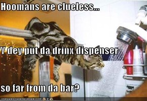 Hoomans are clueless... Y dey put da drinx dispenser so far from da bar?