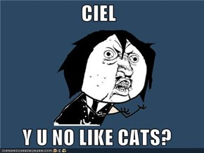 CIEL  Y U NO LIKE CATS?