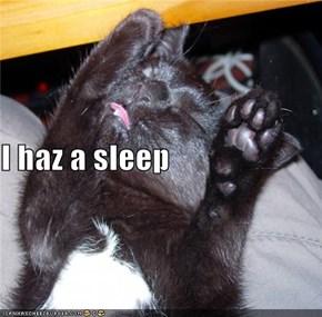 I haz a sleep