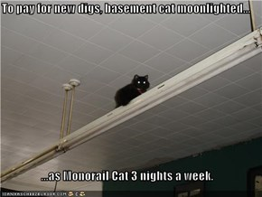 To pay for new digs, basement cat moonlighted...  ...as Monorail Cat 3 nights a week.