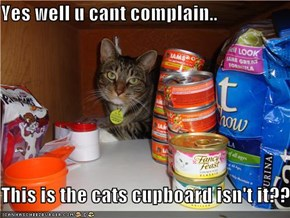 Yes well u cant complain..  This is the cats cupboard isn't it??