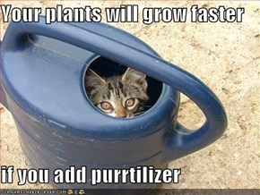 Your plants will grow faster  if you add purrtilizer