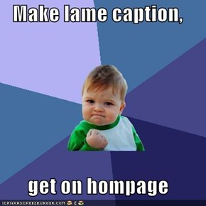 Make lame caption,  get on hompage