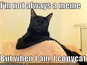 I'm not always a meme  But when I am, I copycat