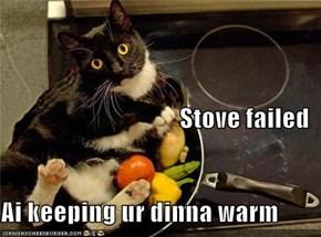 Stove failed Ai keeping ur dinna warm