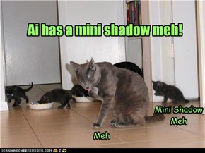 Mini shadow Meh!