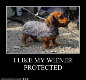 I LIKE MY WIENER PROTECTED