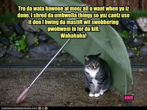 Tro da wata bawoon at meez all u want when yu iz done, I shred da umbwella thingy so yuz cantz use it den I bwing da mastiff wit swobbering pwobwem in for da kill. Wahahaha!