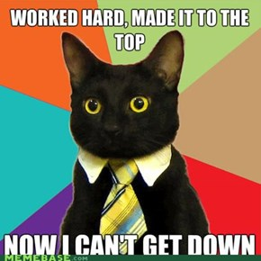 Business Cat: The Corporate Ladder Is Terrifying