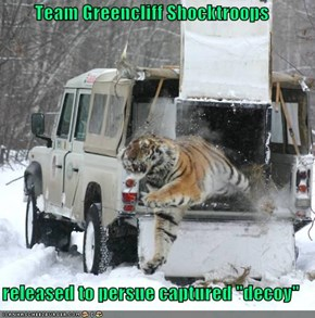 "Team Greencliff Shocktroops  released to persue captured ""decoy"""