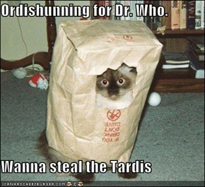 Ordishunning for Dr. Who.  Wanna steal the Tardis