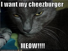 I want my cheezburger  MEOW!!!!