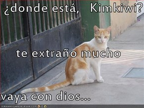 ¿donde está,   Kimkiwi? te extraño mucho vaya con dios...