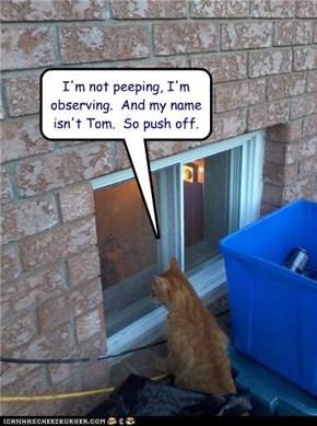 I'm not peeping,