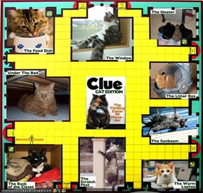 CLUE: Cat Edition