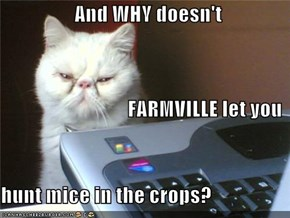 And WHY doesn't                                FARMVILLE let you hunt mice in the crops?