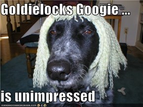 Goldielocks Googie ...  is unimpressed