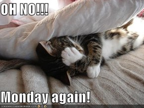 OH NO!!!  Monday again!