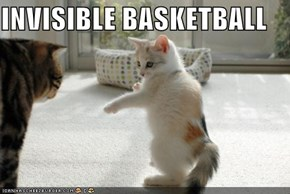 INVISIBLE BASKETBALL