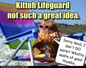 Kitteh Lifeguard  not such a great idea.