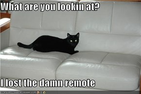 What are you lookin at?  I lost the damn remote