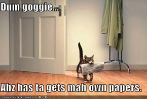 Dum goggie...  Ahz has ta gets mah own papers.