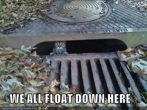 WE ALL FLOAT DOWN HERE