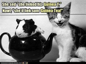 A Guinea Foul?
