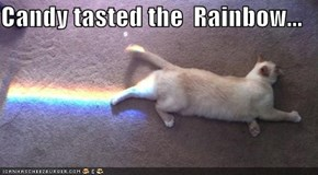 Candy tasted the  Rainbow...